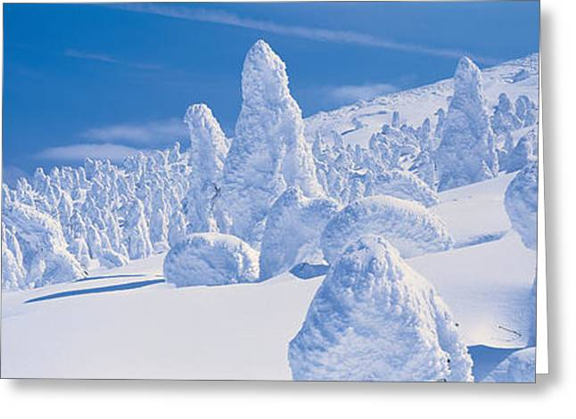Snow Drifts Greeting Cards - Zao Yamagata Japan Greeting Card by Panoramic Images