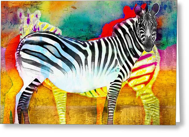 Bchichester Greeting Cards - Zebra Colors of Africa Greeting Card by Barbara Chichester