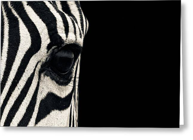 Zebra Greeting Cards Greeting Cards - Zebra Greeting Card by Cool Canvas