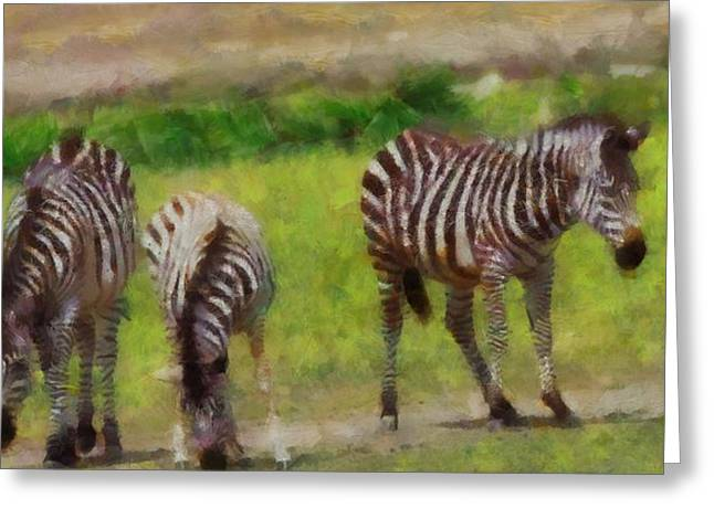 Zebra Eating Greeting Cards - Zebra Family Greeting Card by Dan Sproul