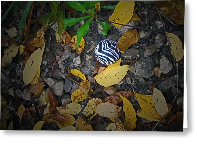 Prints Of Zebras Greeting Cards - Zebra Gloss Greeting Card by Cyryn Fyrcyd