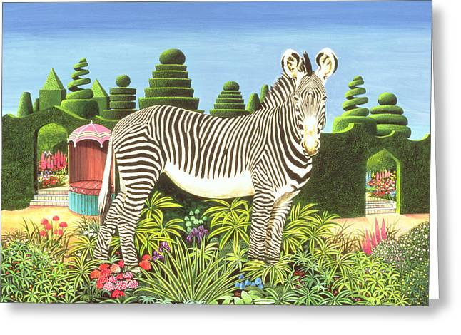 Zebra In Acrylic Greeting Cards - Zebra In A Garden Greeting Card by Anthony Southcombe