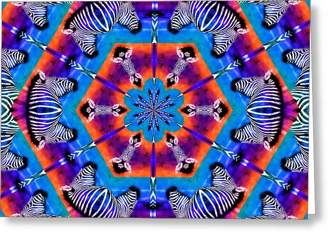 Ft Worth Greeting Cards - Zebra Kaleidoscope Greeting Card by Elizabeth Budd