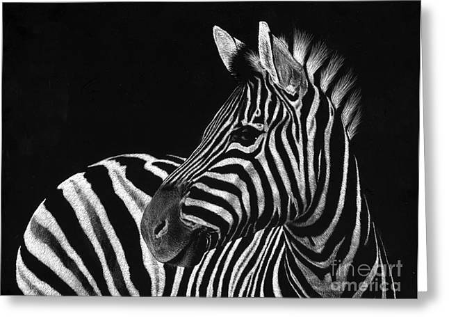Photo-realism Greeting Cards - Zebra No. 3 Greeting Card by Sheryl Unwin