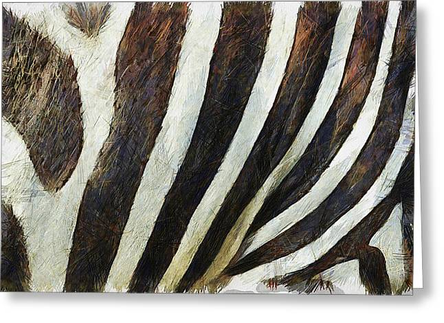 Cute Digital Art Greeting Cards - Zebra Texture Greeting Card by Ayse Deniz