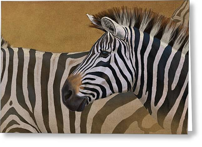 Zebras Greeting Cards - Zebra Trio Greeting Card by Aaron Blaise