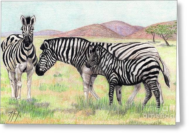 Camouflage Drawings Greeting Cards - Zebra Trio Greeting Card by Audrey Van Tassell
