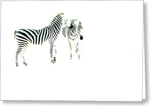 Overexposed Greeting Cards - Zebras 2 Greeting Card by Jessica Velasco
