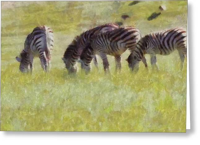 Zebra Eating Greeting Cards - Zebras In Africa Greeting Card by Dan Sproul
