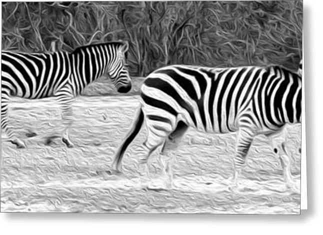 Paint Effect Greeting Cards - Zebras Greeting Card by Rebecca Cozart
