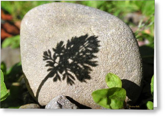 Mind Energy Greeting Cards - Zen Garden Greeting Card by Christina Rollo