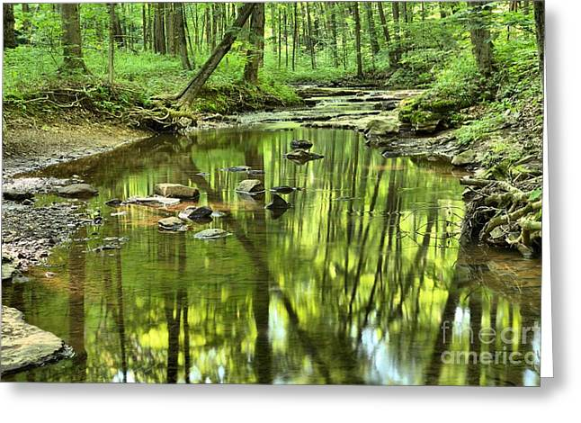 Mcconnells Mill Greeting Cards - Zen In The Forest Greeting Card by Adam Jewell