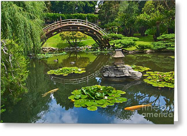 Weeping Greeting Cards - ZEN - Japanese Garden with Moon Bridge and Lotus Pond with Koi Fish. Greeting Card by Jamie Pham