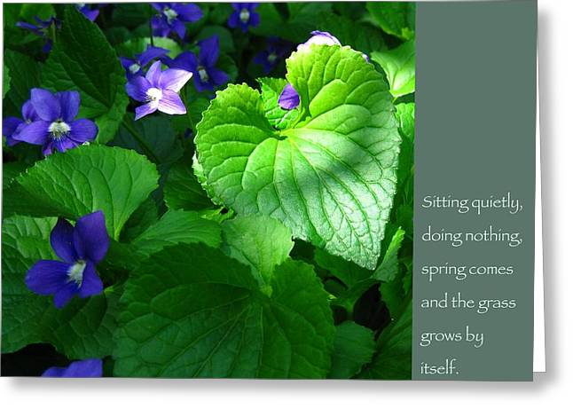Gautama Greeting Cards - Zen Proverb with Violets Greeting Card by Heidi Hermes