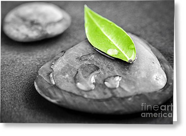 Submerged Greeting Cards - Zen stones Greeting Card by Elena Elisseeva
