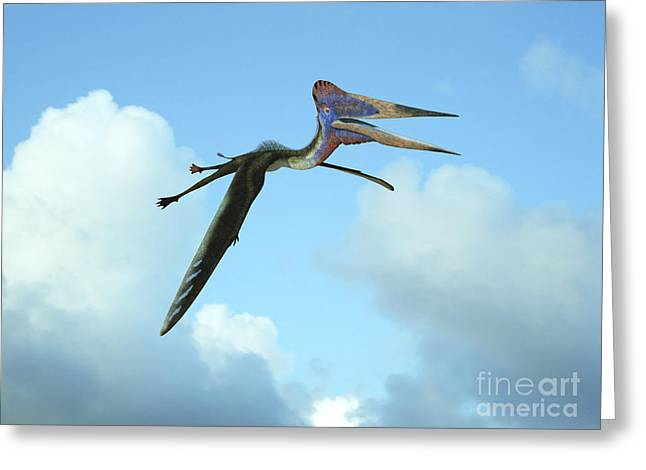 Flying Animal Greeting Cards - Zhejiangopterus, A Genus Of Azhdarchid Greeting Card by Walter Myers
