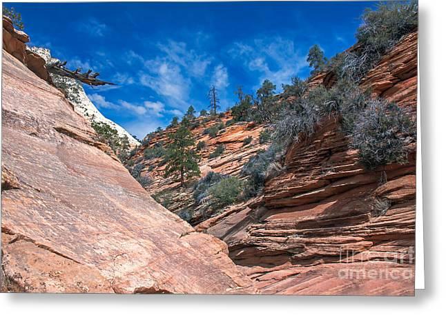 Navajo Basin Greeting Cards - Zion Beauty Greeting Card by Robert Bales