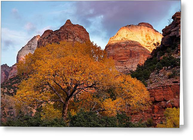 Southern Utah Greeting Cards - Zion Cliffs Autumn Greeting Card by Leland D Howard