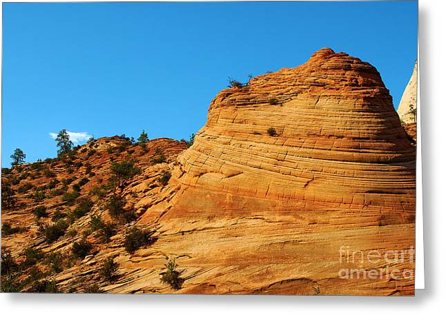 Monolith Greeting Cards - Zion National Park 6 Greeting Card by Micah May