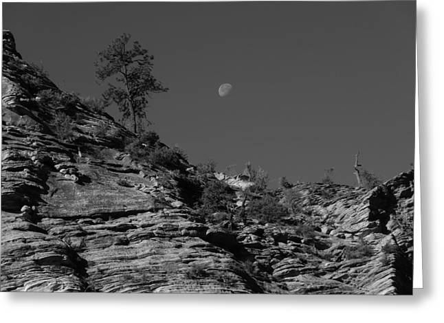 Moonrise Greeting Cards - Zion National Park And Moon In Black And White Greeting Card by Dan Sproul