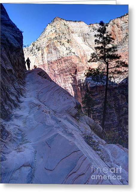 Ledge Greeting Cards - Zion National Park Hiker Climbs Hidden Canyon Trail Greeting Card by Gary Whitton