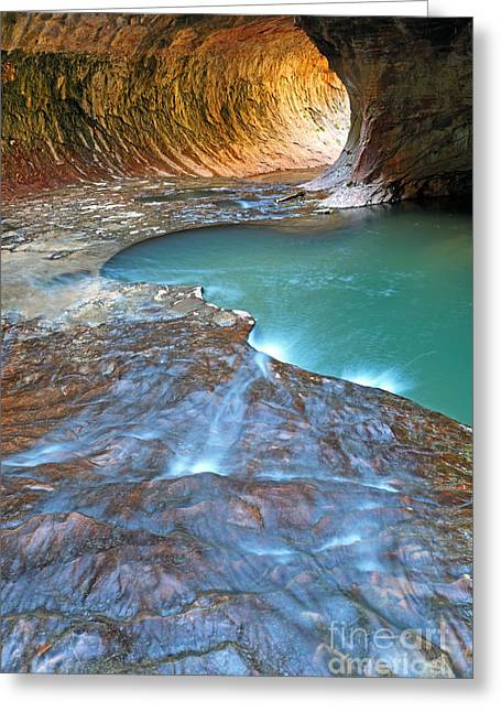 North Fork Greeting Cards - Zion National Park Greeting Card by Rainer Großkopf