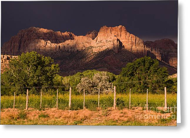 Geobob Greeting Cards - Zion Peaks lit by Dramatic Sunlight dark and light and storm clouds Rockville Utah Greeting Card by Robert Ford