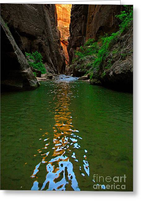 Narrow Canyons Greeting Cards - Zion Reflections - The Narrows at Zion National Park. Greeting Card by Jamie Pham