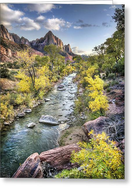 North Fork Greeting Cards - Zion Greeting Card by Todd Young