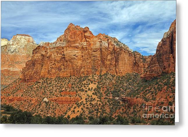 Navajo Basin Greeting Cards - Zion Walls Greeting Card by Robert Bales