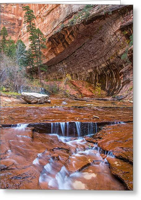 Canon Eos 6d Greeting Cards - Zion Wilderness Greeting Card by Pierre Leclerc Photography
