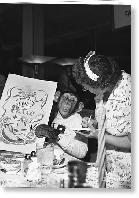 Ordering Greeting Cards - Zippy The Chimp Greeting Card by Dick Hanley