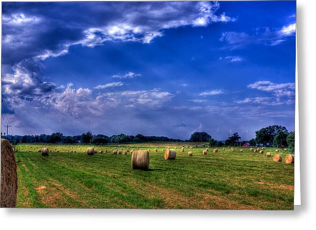 Hayfield Greeting Cards - Zippys Hayfield Showered by Sunrays Greeting Card by Reid Callaway