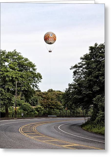 Kelly Digital Art Greeting Cards - Zoo Balloon Greeting Card by Bill Cannon