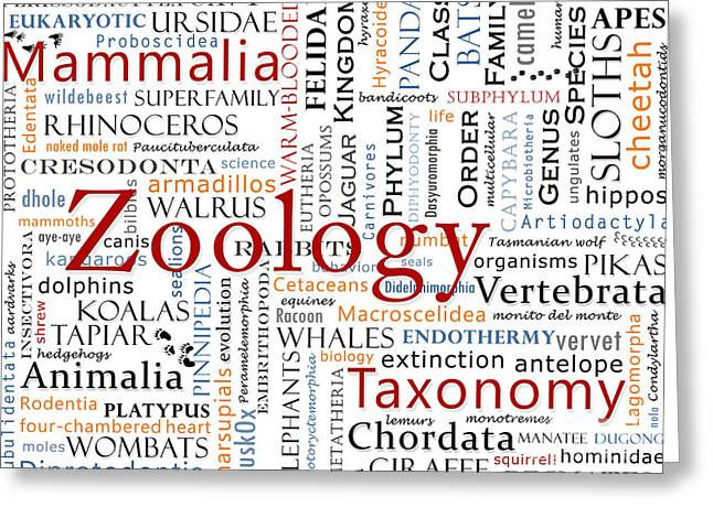 Nature Study Digital Art Greeting Cards - Zoology 1 - Mammals in Typography Greeting Card by Nola Lee Kelsey