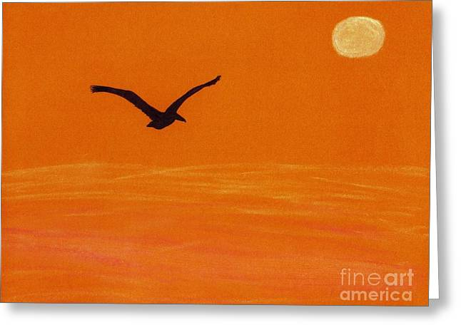 Surf Silhouette Drawings Greeting Cards - Pelican Silhouette Sunset Greeting Card by D Hackett