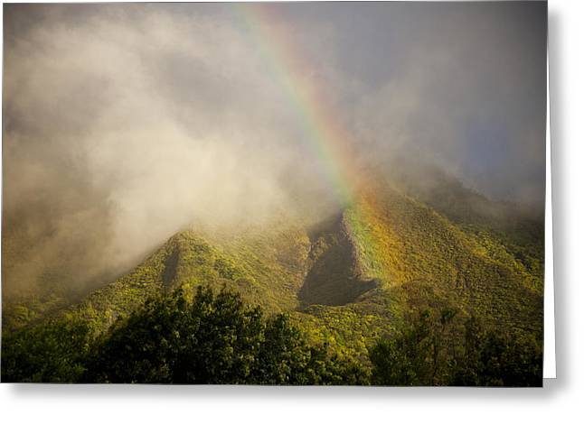 Lush Green Greeting Cards -    A Rainbow Shines Over The Rugged Greeting Card by Taylor S. Kennedy