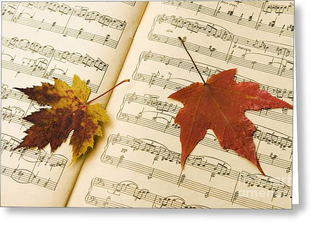 Tchaikovsky Greeting Cards -  Autumn Song  Greeting Card by Igor Kislev