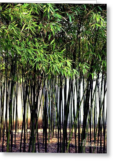 Bamboo Pyrography Greeting Cards -  Bamboo Suzhou Gardens Greeting Card by Marti Green