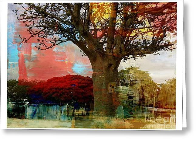 Yesayah Greeting Cards -  Baobab Greeting Card by Fania Simon