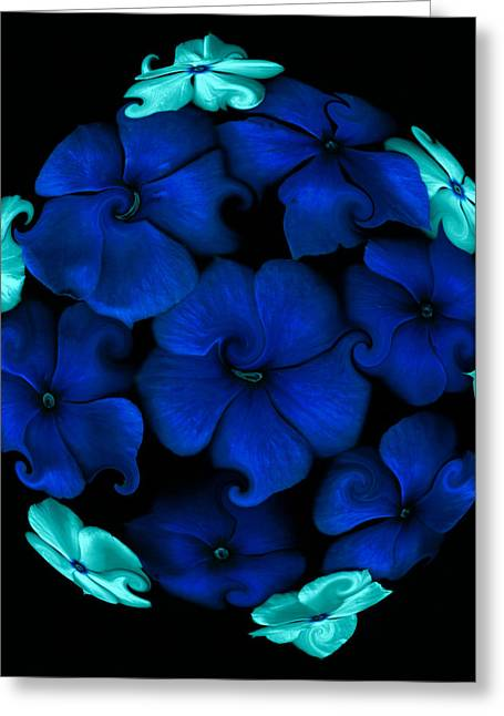 Blue Pastels Greeting Cards -  Blue vinca  Greeting Card by Evelyn Patrick
