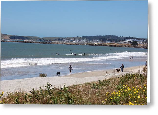 Half Moon Bay Greeting Cards -  California Beach Greeting Card by Carolyn Donnell