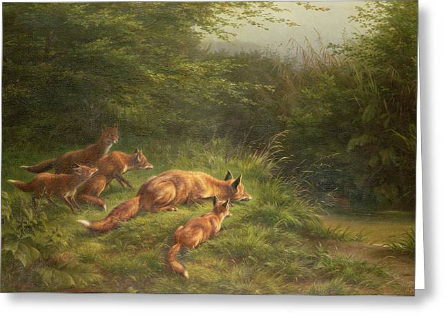 Stake Greeting Cards -  Foxes waiting for the prey   Greeting Card by Carl Friedrich Deiker
