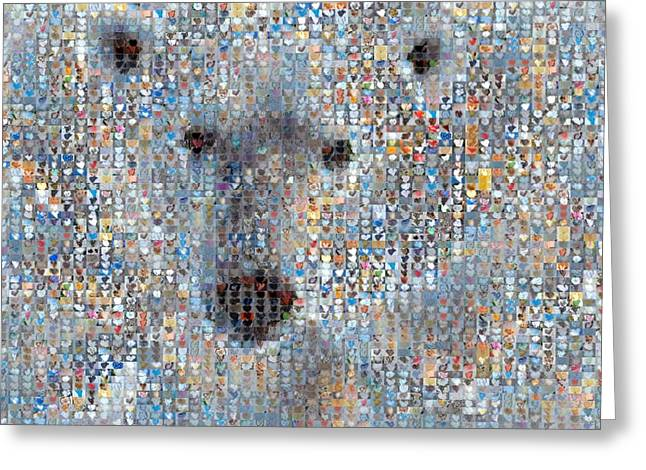 Heart Images Greeting Cards -  Holiday Hearts Polar Bear Greeting Card by Boy Sees Hearts