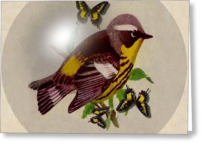 Warbler Digital Art Greeting Cards -  Magnolia Warbler Greeting Card by Madeline  Allen - SmudgeArt