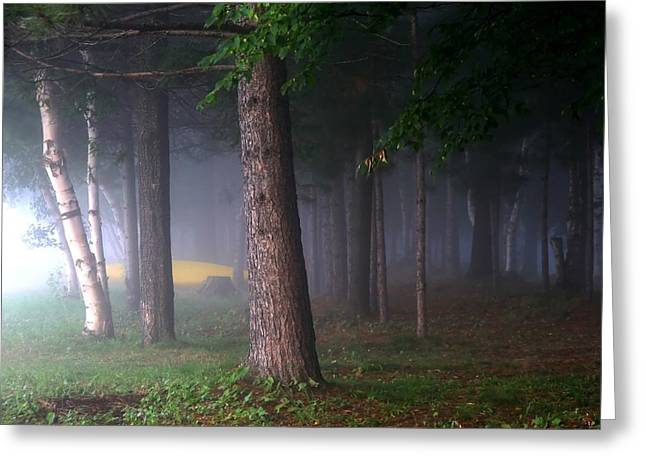 Jim Nelson Greeting Cards -  Morning Mist Greeting Card by Jim Nelson