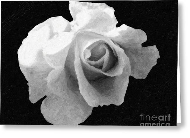 Floral Digital Digital Pyrography Greeting Cards -  My Forgotten ROSE Greeting Card by AHcreatrix