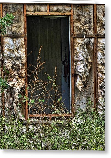 Overgrown Greeting Cards -  No Door Greeting Card by Sandy Poore