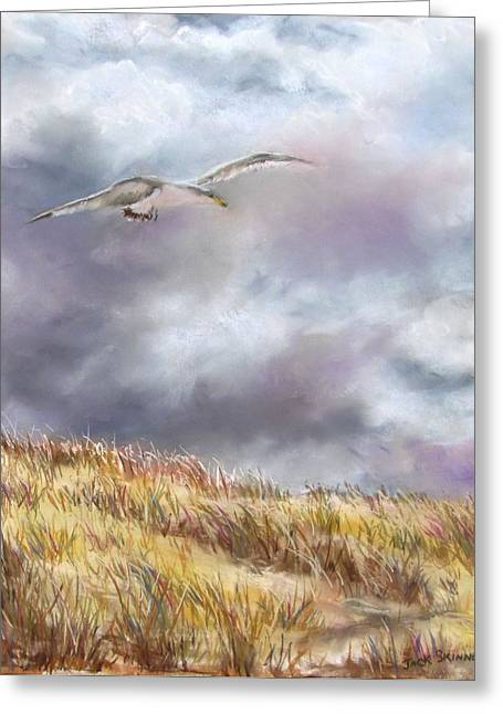 Flying Bird Pastels Greeting Cards -  Seagull Flying Over Dunes Greeting Card by Jack Skinner