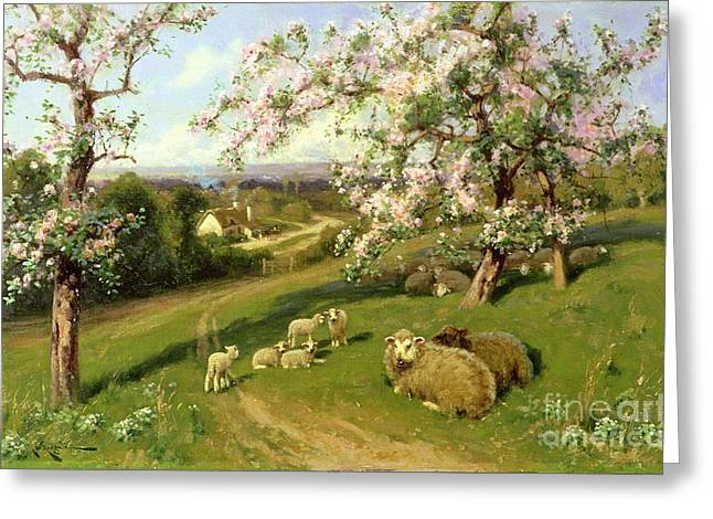 Orchard Greeting Cards -  Spring - one of a set of the four seasons  Greeting Card by Arthur Walker Redgate